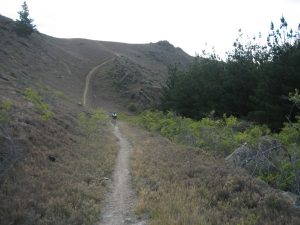 Mountain Biking Trail Bike