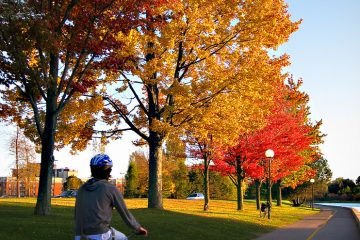 autumn_commute_bike_ride
