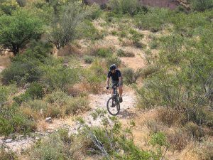 Pemberton Trail in McDowell Part Mountain Biking