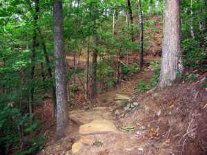 Blankets Creek Mountain Biking Trail