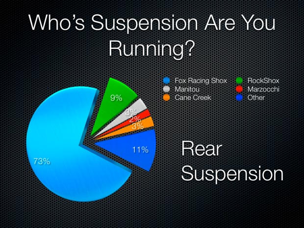 Rear Mountain Bike Suspension Results