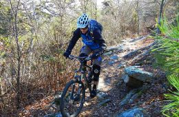 Snake Creek Gap Mountain Biking