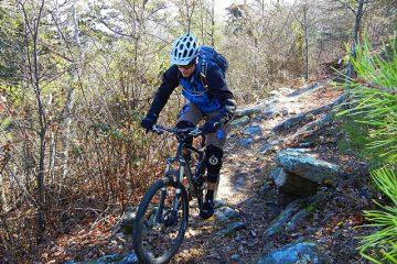 Snake Creek Gap Mountain Biking