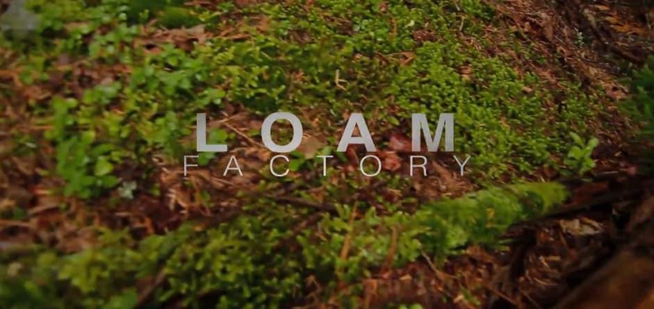 Loam Loam